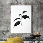 Ficus Benjamina Ficus Tree Art Print