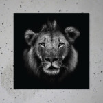 buy lion canvas print poster animal