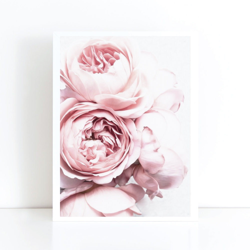 Blush Pink And White Peony By Joelle Scandi Flower Peonies Print
