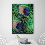 peacock feather art print poster canvas