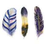Feather Art Print Dark Watercolours